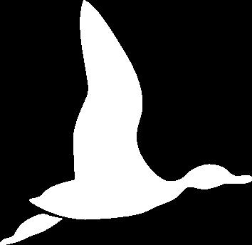 logotipo ravatjol